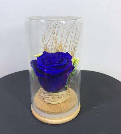 Cam vazoda Mavi Solmayan Gül Tasarımı