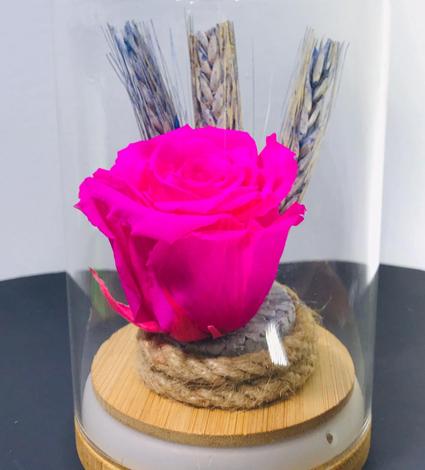 Cam vazoda Pembe Solmayan Gül Tasarımı