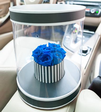 Şeffaf kutuda mavi solmayan gül tasarımı